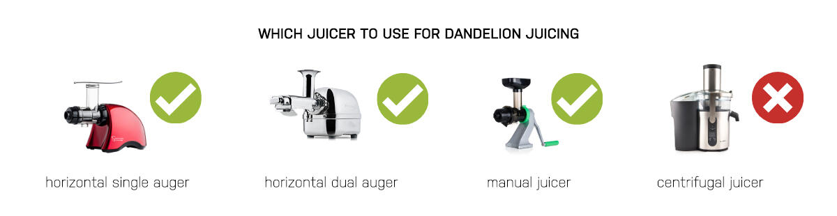 Which juicer for dandelions